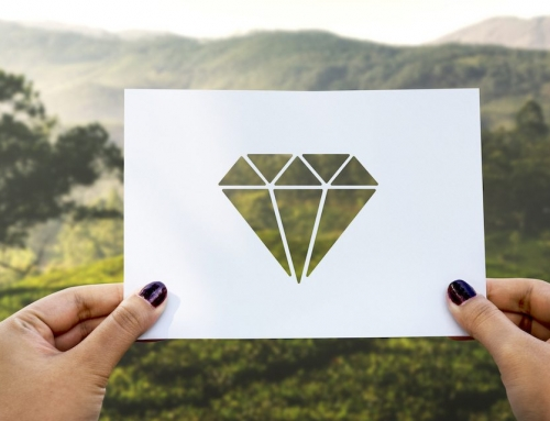 Company of Women Event – Your Untapped Source of Revenue – Mining Acres of Diamonds